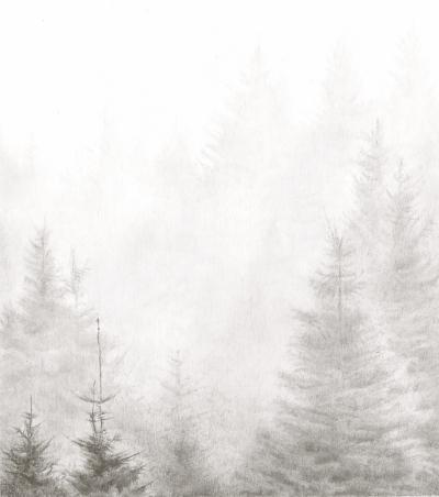 BelleverTor/Dartmoor/Mist/PinConifer/Drawing/Pencil/Graphite/NationalPark/Tor/Christmas