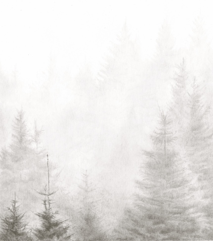 BelleverTor/Dartmoor/Mist/PinConifer/Drawing/Pencil/Graphite/NationalPark/Tor/Christmas