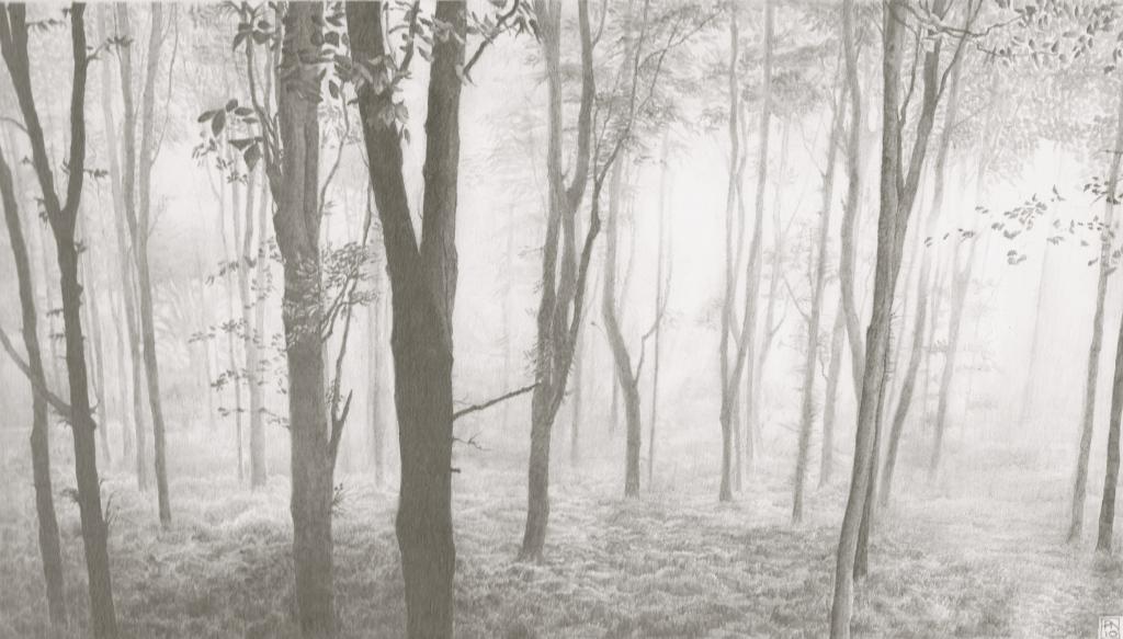 langdonhill/chideock/dorset/jurassiccoast/southwest/aonb/nature/mist/trees/sublime/drawing/pencil/graphite