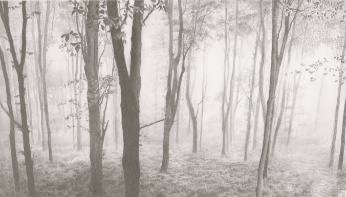 langdonhill/chideock/dorset/jurassiccoast/southwest/aonb/nature/mist/trees/sublime/drawing/pencil/graphite