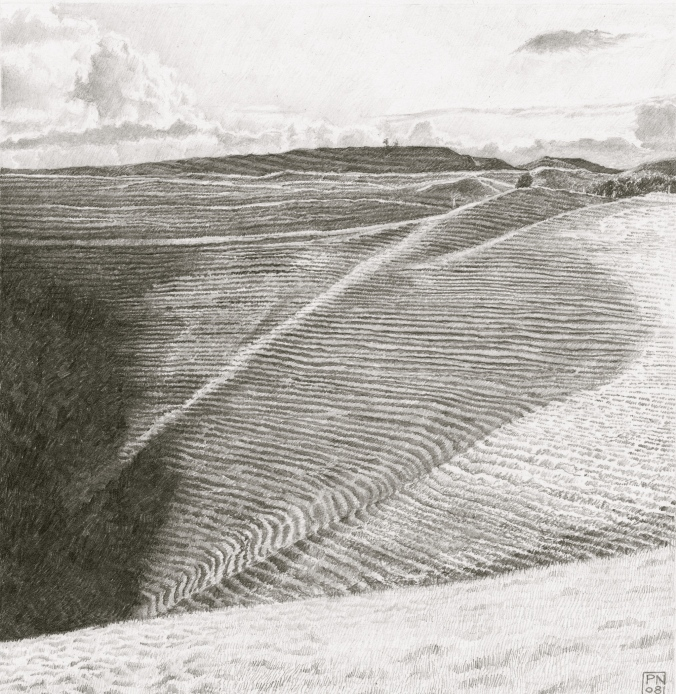eggardon/hardy/westdorset/aonb/hillfort/sheeptracks/shadow/contrast/tone/drawing/pencil/graphite