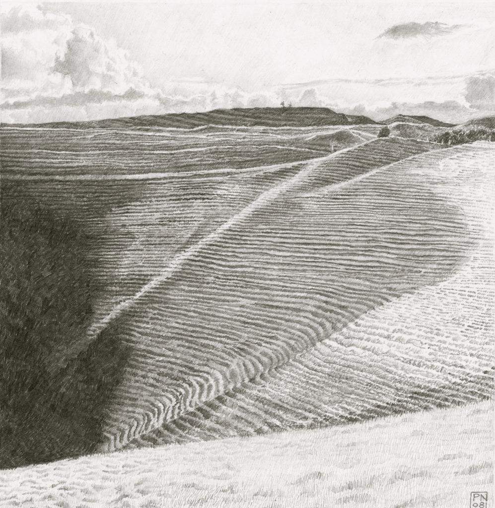 eggardon/hardy/westdorset/aonb/hillfort/sheeptracks/shadow/contrast/tone/drawing/pencil/graphite